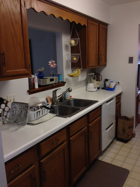 Before Galley kitchen with double sink and dishwasher drawers, Northbrook IL