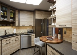 Urban style kitchen in Winnetka IL 2