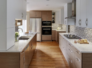 Two-Tone Contemporary Kitchen in Deerfield, IL