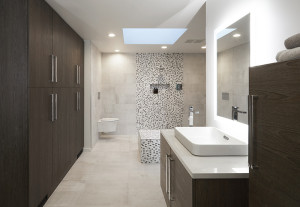 Minimalist Spa Master Bath in Highland Park, IL